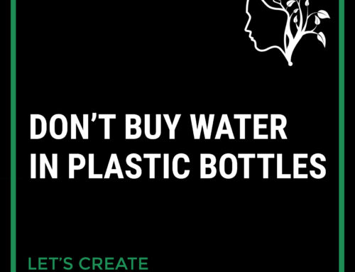 Plastic Bottles Could be Harmful to Your Health
